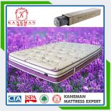 Lavender Fabric Foam Encased Pocket Spring Mattress for Home Use