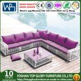 Outdoor and Garden Leisure Rattan Sofa (TG-004)