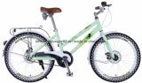 CT24hh807 24inch Steel Lady Bicycle with Disc Brakes