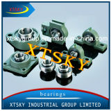 Bearing Housing of Pillow Block Ball Bearings