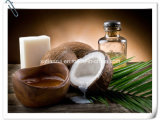 Manufacturer Natural Coconut Juice/ Coconut Water Extract Powder