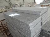 Cheap Natural Grey Granite for Tile, Slabs, Countertops