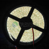 2835 120LEDs IP68 Waterproof LED Ribbon Light for High Quality