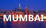 Ocean Freight Service From Qingdao to Mumbai
