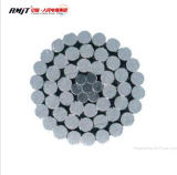 Stranded Aluminum Conductor Steel Reinforced ACSR to ASTM Standard