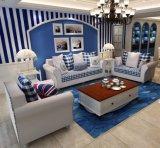 Home Sofa Wooden Frame Living Room Sofa (HX-SL037)
