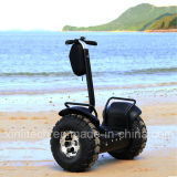 Smart Balance Wheel Escooter 4000W 2 Wheel Electric Scooter