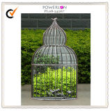 Birdcage-Style Lovely Medium-Sized Iron Glass Mirror/45.5*15*77cm/18*6*30.5 Inch