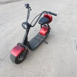 Harley Scrooser Style Electric Scooter with Big Wheels Fashion Citycoco