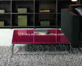 Modern Style Glass Top Home Coffee Table (NW-L0102)