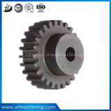 OEM Forged Steel Fixed Small Worm/Bevel/Helical/Pinion Gear