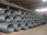 5.5-12mm High Carbon Steel Wire Rod Factory in China