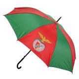 Auto Open National Flag Advertising Umbrella (JS-016)