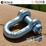 D Shackle with Forged Bolt and Nut Shackle