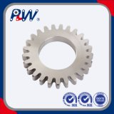 Stainless Steel Transmission Gear
