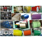 High Quality Factory Price Prepainted Galvanized Steel Coil PPGI
