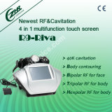 RF+Cavitation Slimming Beauty Equipment (R9-Riva)