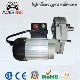 220 Volt AC Blender Gear CSA Motor