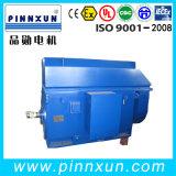 Three Phase (6kv 10kv) High Voltage Motor for Pump
