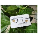 Access Plastic Smart Card PVC Card Chip Card