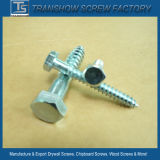 M8 Cheaper Price DIN571 Galvanized Ms Hex Head Wood Screws