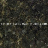 Wholesale Verde Ubatuba Granite for Flooring Tile, Slab, Countertop