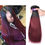 T1b Burgundy 99j Red Mink Brazilian Virgin Hair