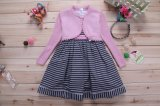 Girl Fashion Pink Long Sleeve Sweater Dress (LH1302)