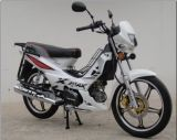 Motorcycle Popular, Forza, Xmas, High Quality, Cheap