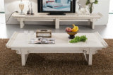 European Style White Travertine Coffee Table for Home Use (TC-038)