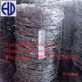 Zinc Coated Galvanized Barbed Wire