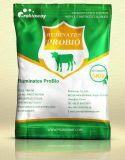 OEM Ruminant Probiotics Livestock Feed Additive Acidifying Agent Vitamin