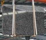 Black Fossil Marble Slab for Indoor Flooring Tile
