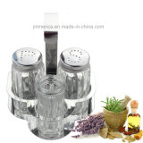 Transparent Salt and Pepper Shaker with Stainless Steel Stand