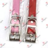 Pet Collars with Plain Buckle Wholesale (PC15121404)