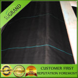 China Factory Direct Sale of PP Black Ground Cover Fabric