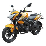 ′bumblebee′ High Speed 125cc Sport Motorcycle for Sale
