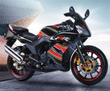 Fantastic New Style 125cc High Quality Gas Moto