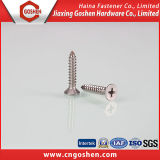 Acceptance Customized, Countersunk Tapping Screw, Cross Recessed Head