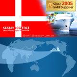 Competitive Ocean / Sea Freight to Denmark From China/Tianjin/Qingdao/Shanghai/Ningbo/Xiamen/Shenzhen/Guangzhou