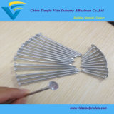 Nails Manufacturer Smooth Shank and Big Head Eg Roofing Nails 25mm