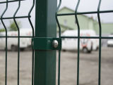 PVC Galvanized Welded Mesh Fence for Garden and House