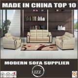 2017 New Stylish Leather Combination Sofa