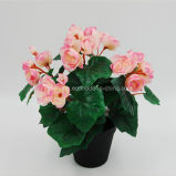 Real Touch Artificial Flower Rose Begonia