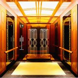 Fujizy 800/1000/1600kg Passenger Lift Passenger Elevator