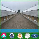 Modern Breeding Light Steel Structure Chicken House Farm (XGZ-PH012)