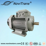 0.75HP AC Ie4 Three Phase Permanent Magnet Synchronous Electric Motor