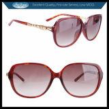 Ladies Popular Sunglass Eyewear