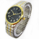 Luxury Stainless Steel Bracelet Watch (HLS-3401)