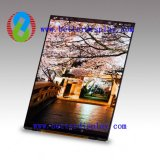 Better 1.44 to 12 Inch TFT LCD for Tablet PC Car Video LCD Panel